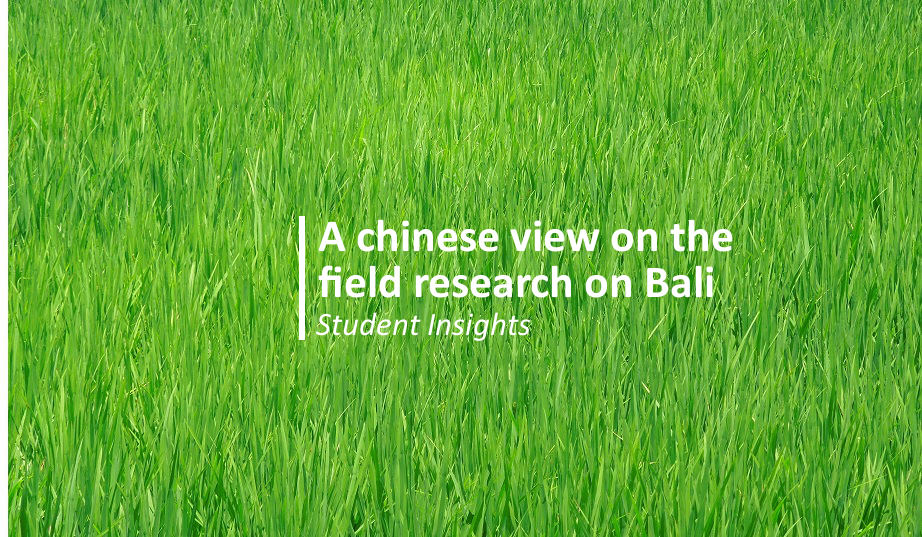 Student Insights: a Chinese view on the field research on Bali